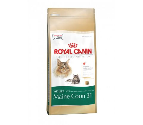 Maine Coon 2 kg.
