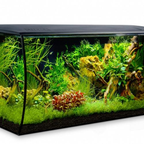 Fluval Flex 123 ltr - Sort