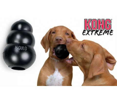 KONG Extreme Original, Sort